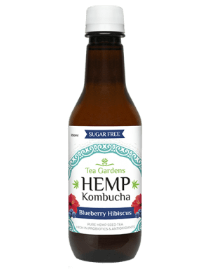Hemp Kombucha Blueberry 350ml