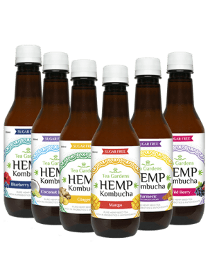 Mixed Hemp Kombucah 350ml