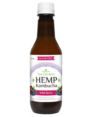 Hemp Kombucha 350ml Wild Berry