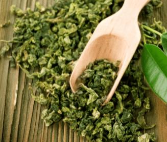 Probiotic Iced Tea Made with Organic Green Tea