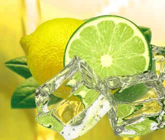 Probiotic Iced Tea Citrus Lemon Lime